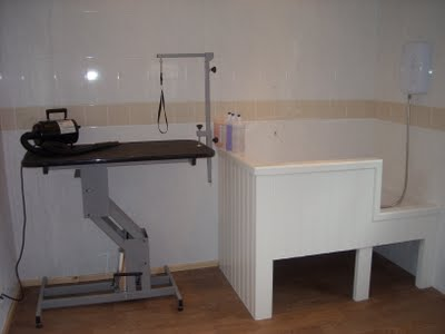 Photo of the inside of our parlor showing the clipping table and dryer